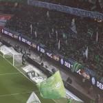 Verein_VfL Wolfsburg_2019