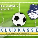 Verein_Klubkasse